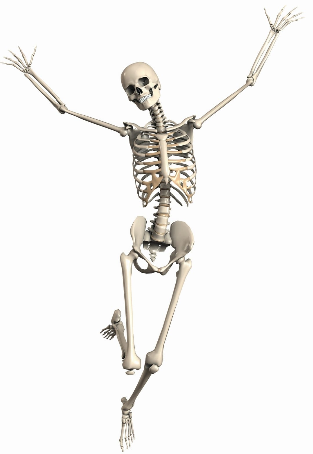 פעילות גופנית ואוסטאופורוזיס